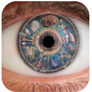 iridologija pranaturas storitve