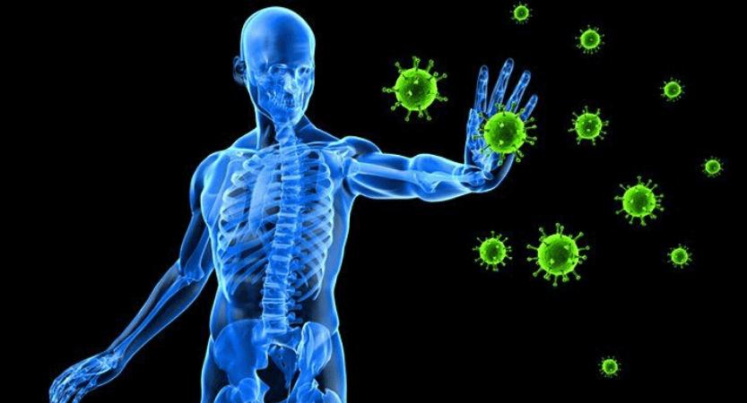 Imunski sistem Matijas PraNaturas