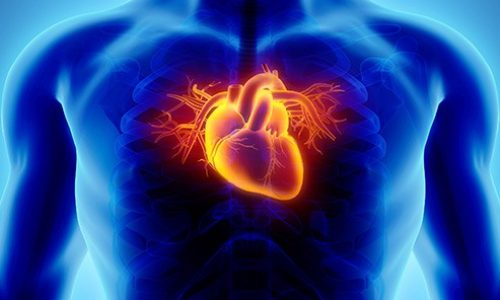 krepitev srca naravno naturopatija pranaturas